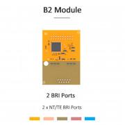 Yeastar B2 Module (2 BRI)